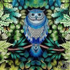 Resultado De Imagen Coruja Jardim Secreto Secret Garden Coloring BookSecret