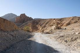 100 In The Valley Of The Kings Wheres The Tomb Of King Tuts Wife Of The Dig Leaves