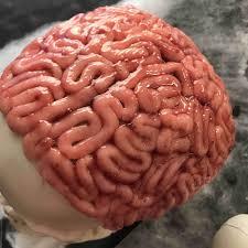 deco cerveau pâte d amande recette de deco cerveau pâte d