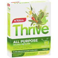 Fertilizer Requirements For Pumpkins by Yates Thrive Soluble Fertilizer 500g Woolworths