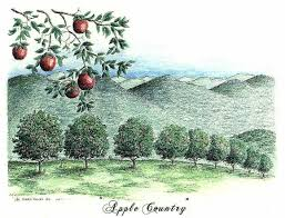 Apple Orchards in Henderson County