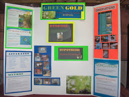 Science Board Projects