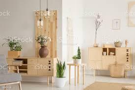 pflanzen auf holz schrank in weiß wohnzimmer interieur mit gemusterten sessel echtes foto stockfoto und mehr bilder baumblüte
