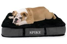 Top Rated Orthopedic Dog Beds by Top Rated Orthopedic Dog Beds Smart Dog Pro
