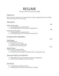 Example Resume Summary Statement