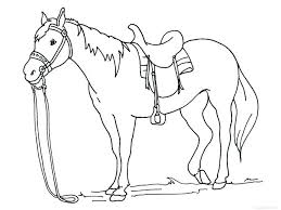 American Quarter Horse Coloring Pages Grazing Traditional Page Free