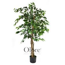 4ft Christmas Tree Uk by Artificial Ficus Tree Green 4ft Indoor Artificial Tree By Olore