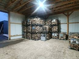brennholz kaminholz trocken wohnzimmer esche