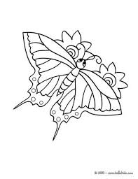 Tiger Swallowtail Butterly Coloring Page Nice Butterfly Sheet More Original Content On Hellokids