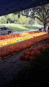 Pumpkin Patch Columbia Sc 2015 by Lake City Fumc Pumpkin Patch Home Facebook