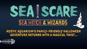 Spirit Halloween Torrington Ct by Home Mystic Aquarium