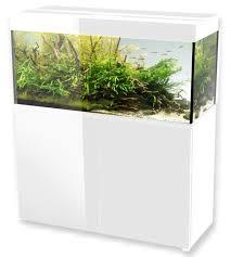 aquariums 120cm volume 240l 300l 360l en vente sur