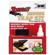 tom cat mouse trap tomcat mouse trap kit 12 count bl33905 the home depot