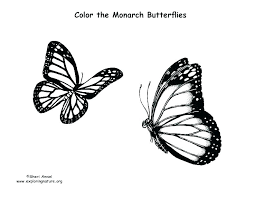 Beautiful Butterfly Coloring Pages Simple