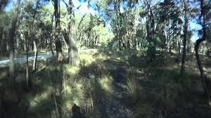 100 Lerderderg State Park Hobbs Road Bullengarook YouTube