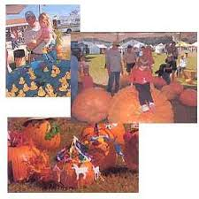 Wv Pumpkin Festival Milton Wv by 187 Best West Virginia Events Images On Pinterest Road Trips