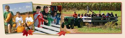 Schaake Pumpkin Patch by Fall Fun In Kansas Chef Alli U0027s Farm Fresh Kitchen