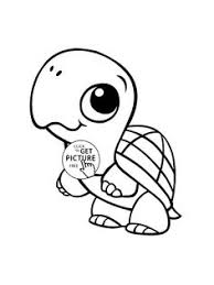 Baby Turtle Animal Coloring Page For Kids Pages Printables Free