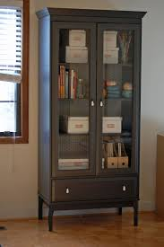 Display Cabinet Ikea To Match Your Living Room Furniture Glass Window With Blind And