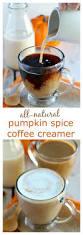 Pumpkin Flavor Flav Instagram by Best 25 Pumpkin Spice Creamer Ideas Only On Pinterest Iced