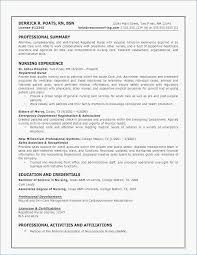 Resume Profile Examples Healthcare 32 Recent 0d Skills Example Pleted Of