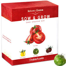 Amazon.com : Grow 4 Types Of Tomatoes From Seed - Indoor Germination ... Sweet Tomatoes The Boston Lunch Lady Amazoncom Drunken 2 Pack Grocery Gourmet Food Hot Dog Of A Food Truck Pays Off For Monroe Fatherson Duo Michigan 6 Varties To Try A Healthier Chesas Gluten Tootin Free Truck Chicago Trucks Celebrity Tomato Prized Flavor And Large Fruit Kitchensurfing Blog Yellow Stock Photos Images Alamy Quebec Citys 5 Favorite Keep Exploring Oath Pizza Roaming Hunger