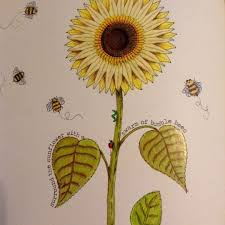 Secret Garden Girassol Jardim Secreto Johanna Basford Adult ColoringColoring BooksColouringSecret