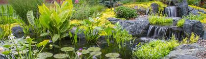 Aquascape Patio Pond Australia by Aquascape Houzz