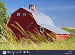Wheat Grows Before A Red Barn In The Palouse Of Eastern Washington ... Red Barn Washington Landscape Pictures Pinterest Barns Original Boeing Airplane Company Building Museum The The Manufacturing Plant Exterior Of A Red Barn In Palouse Farmland Spring Uniontown Ewan Area Usa Stock Photo Royalty And White Fence State Seattle Flight Interior Hip Roof Rural Pasture Land White Fence On Olympic Pensinula
