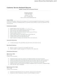 Professional Profile Section Resume Resumes Objective Samples General Examples With Career Customer Service Skills Example To