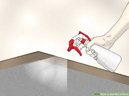 Fleas Live On Wood Floors by 4 Ways To Get Rid Of Fleas Wikihow