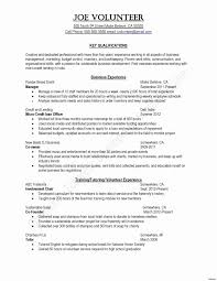 Sample Resume Business Marketing Fresh Usa Jobs Examples Best