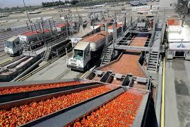 100 Antonini Trucking US Wholesale Prices Jump But Underlying Pressures Look Tame