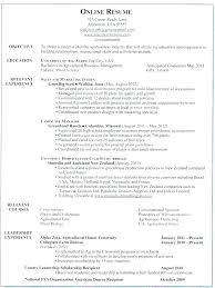 Leadership Scholarship Resume Examples Combined With