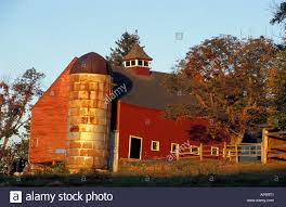 Bolton, MA. USA. A Red Barn On The Schartner Farm In Massachusetts ... Herb Apple Gruyere Scones Now Forager The Best Picking Near Atlanta In Map Form Tennessee Seerville Barn Orchard Winesap Apples 18 Bushel Red Orchards Mt Hood Stock Image 24641381 Orchard Front Mount Photo 27690034 Shutterstock Winery Elkhorn Wi Barnquilt Appleorchard Mapping Georgias In Time For Fall Splendor Experience Autumn At Edwards West