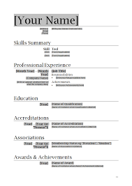 Professional Resume Template Page Format For Word