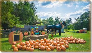 Pumpkin Patch Lafayette La by Holidays Archives Baton Rouge Moms