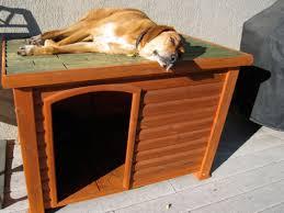 diy diy dog house wooden pdf fine woodworking building furniture