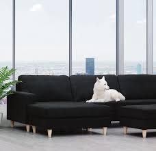 100 Boonah Furniture Court FC Group Cat_MARAPR_2019_235x275_WIP_1st Dropindd