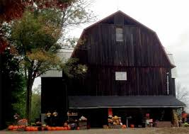 Kingsway Pumpkin Farm Hours by Akron Ohio Area Corn Mazes Hay Rides Pumpkin Patches And Fall