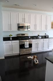 KitchenNeat Small Kitchen With Glossy Black Floor And White Cabinets Also Solid Countertop Neat
