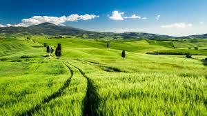 1920x1080 Tuscany Fields Landscape Italy Europe