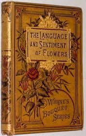 Vintage Books For Decoration by 3dc0434ebda0afe6477b3a4aca413ffb Jpg 736 1164 Libros Preciosos