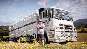 Dealer Award Prompts Fuso Sales | The West Australian Used 2013 Toyota Tundra 4wd Truck For Sale In Grand Junction Near Gj Sales 2019 20 Top Car Models Used Freightliner Scadia Sleeper For Sale In 107195 Diesel Man Center Llc Tunes Trucks Cars Suvs 7500kgs Isuzu N75190 Beavertail Alltruck Group Cheap Truckss Fedex New 10 Eicher Second Hand Dealers Indore City Best Inventory Platinum Inc Tampa Fl Ford Ranger Western Slope Dealer 2002 Mitsubishi Fp540 Trucksalescomau Man Tgl 7150 Flatbed