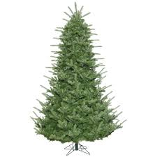 75 Foot Sheridan Spruce Artificial Christmas Tree 800 LED M5 Italian Warm White Mini Lights