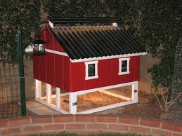 Best Color For Inside Chicken Coop With Building A Chicken Coop ... New Age Pet Ecoflex Jumbo Fontana Chicken Barn Hayneedle Best 25 Coops Ideas On Pinterest Diy Chicken Coop Coop Plans 12 Home Garden Combo 37 Designs And Ideas 2nd Edition Homesteading Blueprints Design Home Garden Plans L200 Large How To Build M200 Cstruction Material For Inside With Building A Old Red Barn Learn How Channel Awesome Coopwhite Washed Wood Window Boxes Tin Roof Cb210 Set Up