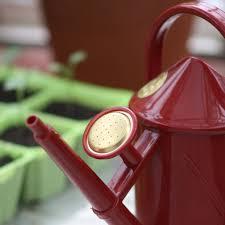 100 Indoor Watering Can Plastic Haws 1 Litre Red