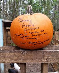 Gainesville Pumpkin Patch by Micanopy Man Collecting Pumpkins To Feed His Farm Animals U2013 Wuft News