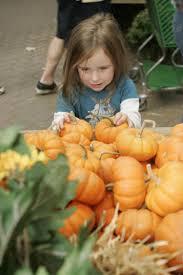 Westbury Gardens Halloween by Ultimate Fall Guide Pickin U0027 Ny Daily News