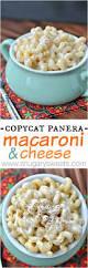 Panera Pumpkin Muffin Recipe by Copycat Panera Macaroni And Cheese Shugary Sweets